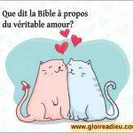 Que dit la Bible à propos du véritable amour?