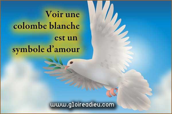 La colombe blanche symbole de l'amour