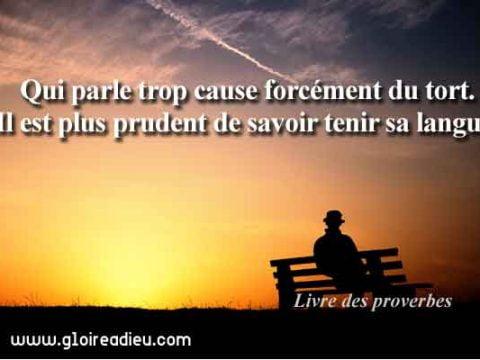 Verset 10:19 du Livre des proverbes de Salomon