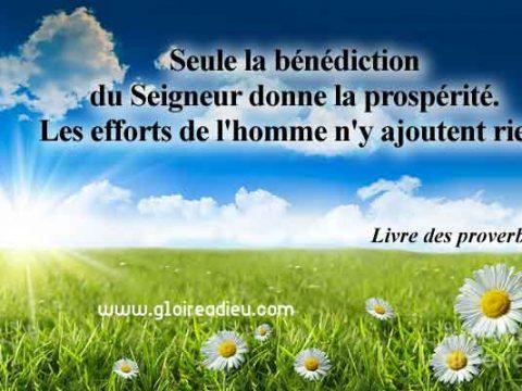 Verset 10:22 du Livre des proverbes de Salomon