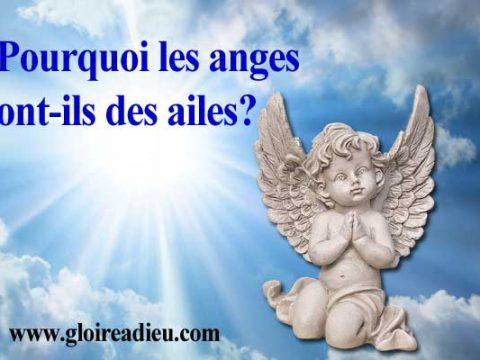 Pourquoi les anges ont-ils des ailes?