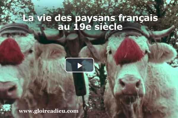 La vie des paysans français au 19e siècle – vidéo