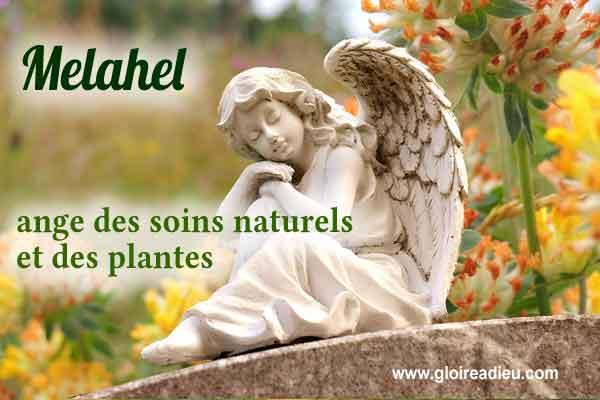23 – Melahel ange des soins naturels et des plantes