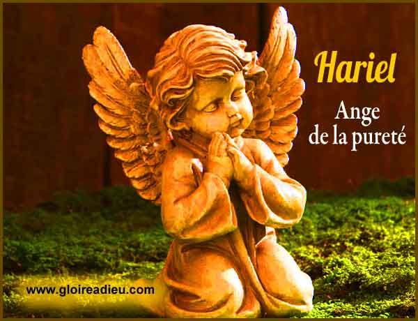 Hariel Ange De La Purete