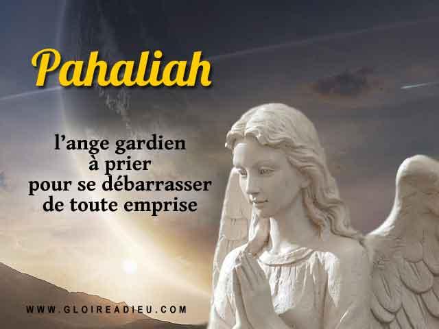 Pahaliah Ange Contre Emprise
