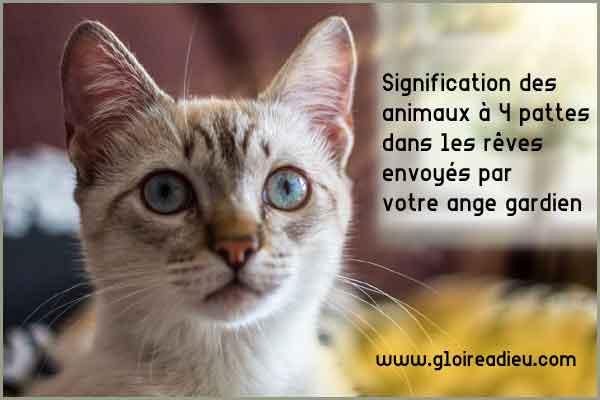 Signification des animaux à 4 pattes dans les rêves envoyés par votre ange gardien