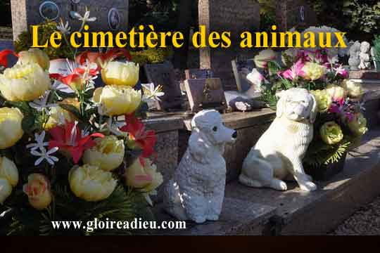 Histoire des cimetières pour animaux