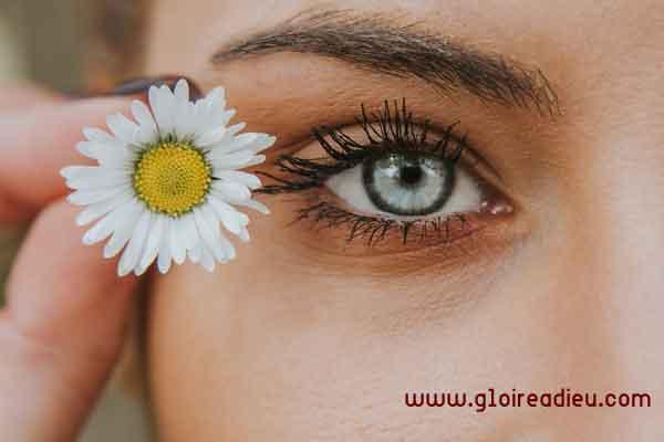 Conseils de maquillage pour avoir de jolis sourcils
