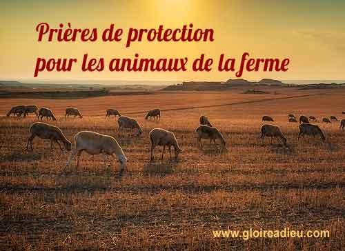 Prière de protection des animaux de la ferme contre le mal